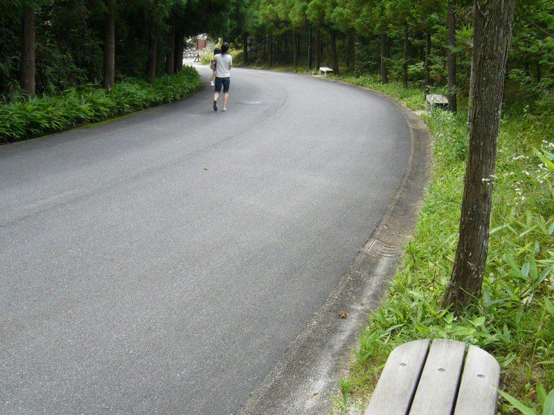 写真:緑に囲まれた園路とベンチ。子どもを抱きかかえた女性が歩いている