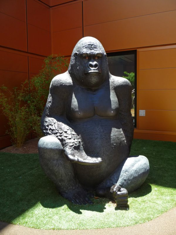 写真:片膝を立てて座る大きなゴリラ。差し出した手の平は、大人が腰かけても快適