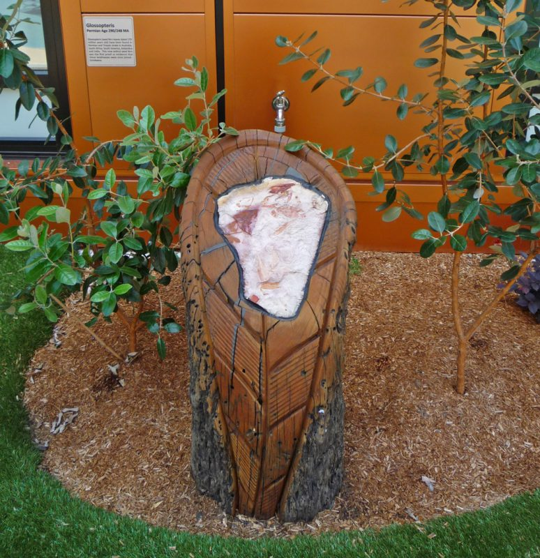 写真:老木の切り株のような柱に埋め込まれた化石。触ると葉の形がわかる。後ろの壁に解説パネル