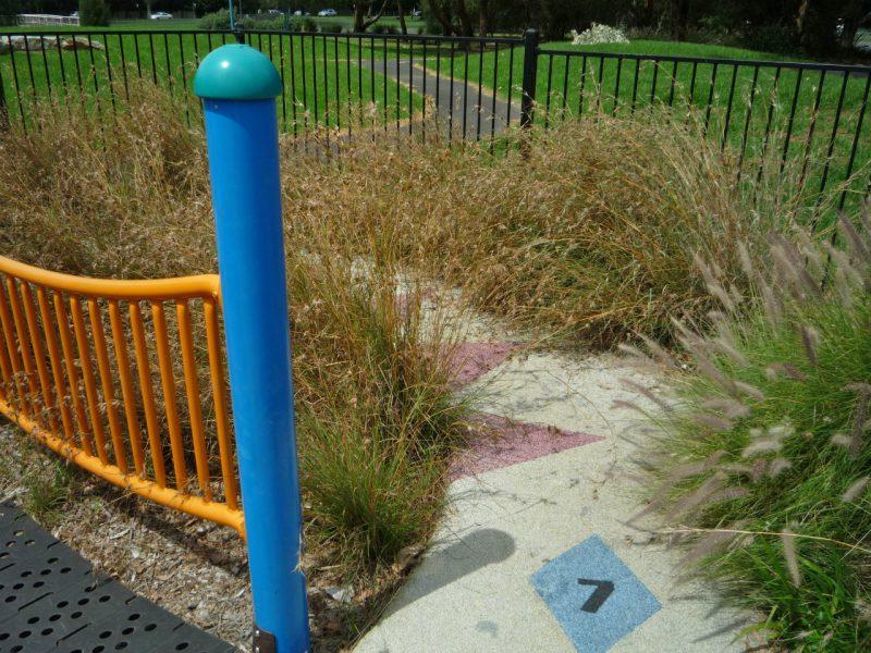 写真:小道が半分隠れるほど草が生い茂った場所