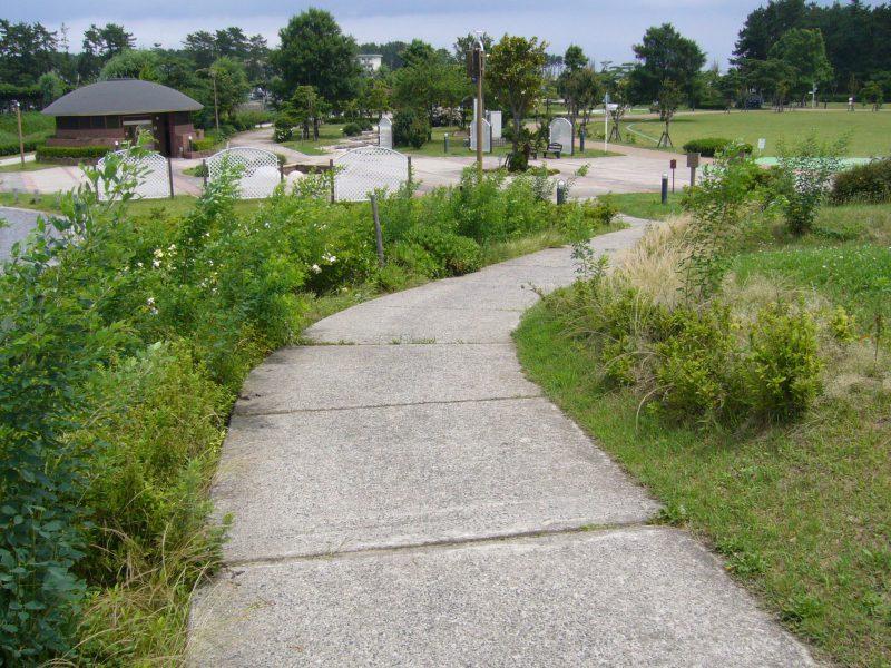 写真:丘の頂上に続く歩道