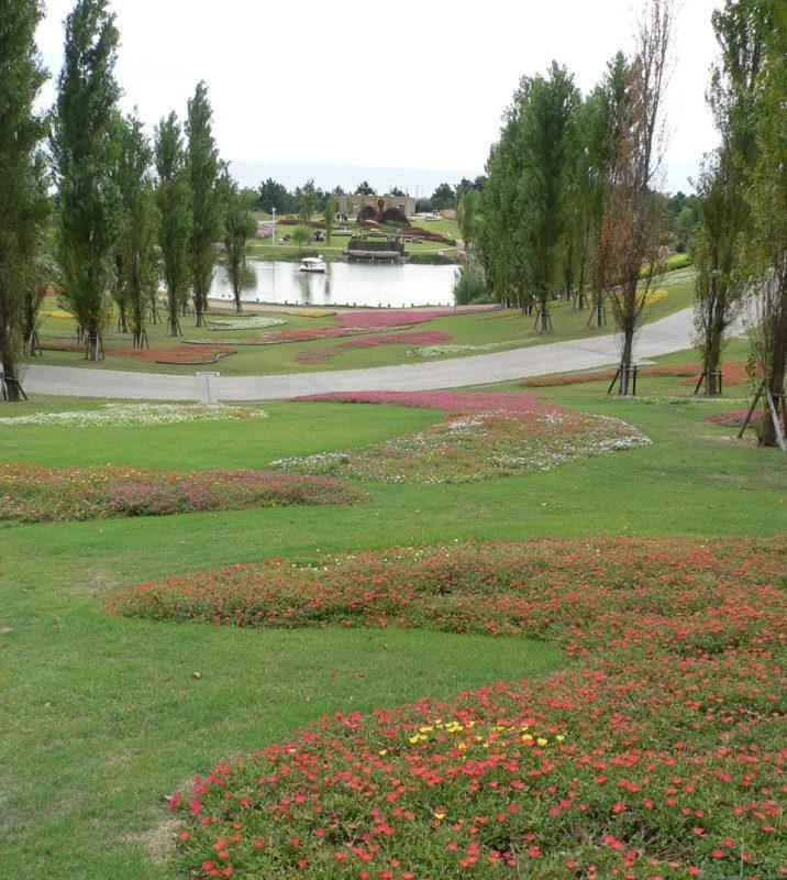 写真:ポプラの木々が立ち並ぶ丘から見下ろした景色。芝生の上に模様を描くように植えられた花々