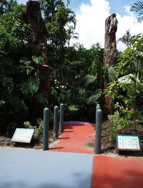 写真:様々な熱帯植物に囲まれたスポット