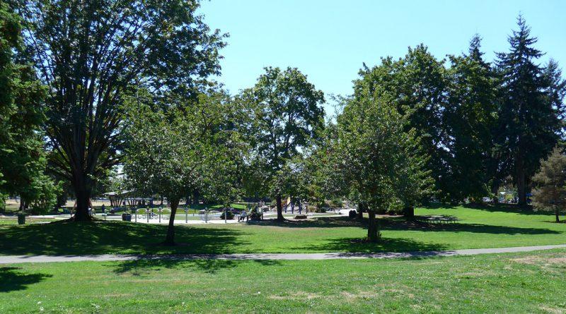 写真:公園。芝生の広場にさまざまな木々と遊歩道