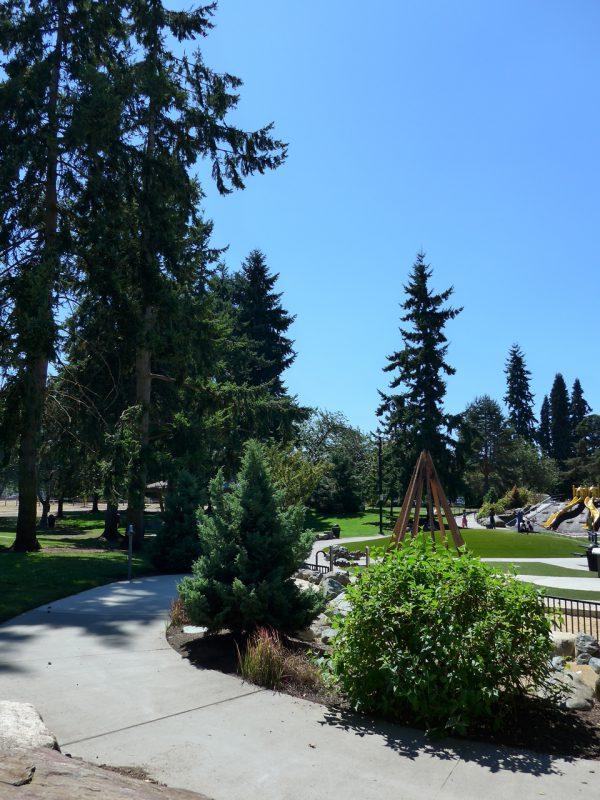 写真:遊び場の遠景。周りは高木が立ち並ぶ芝地