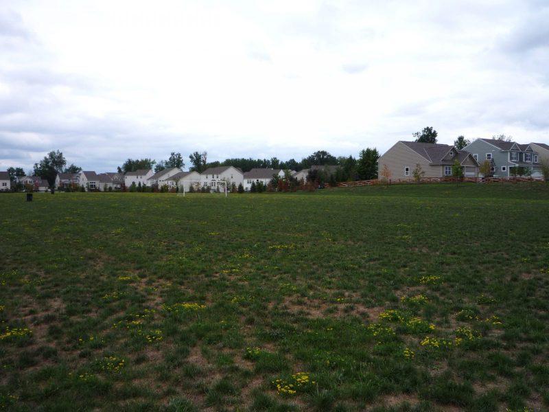 写真:広大なフィールドとその向こうの住宅地