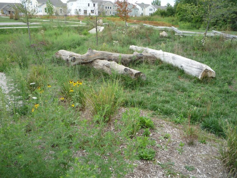 写真:いかにも自然な草地の中に、古びた大きな倒木が3本