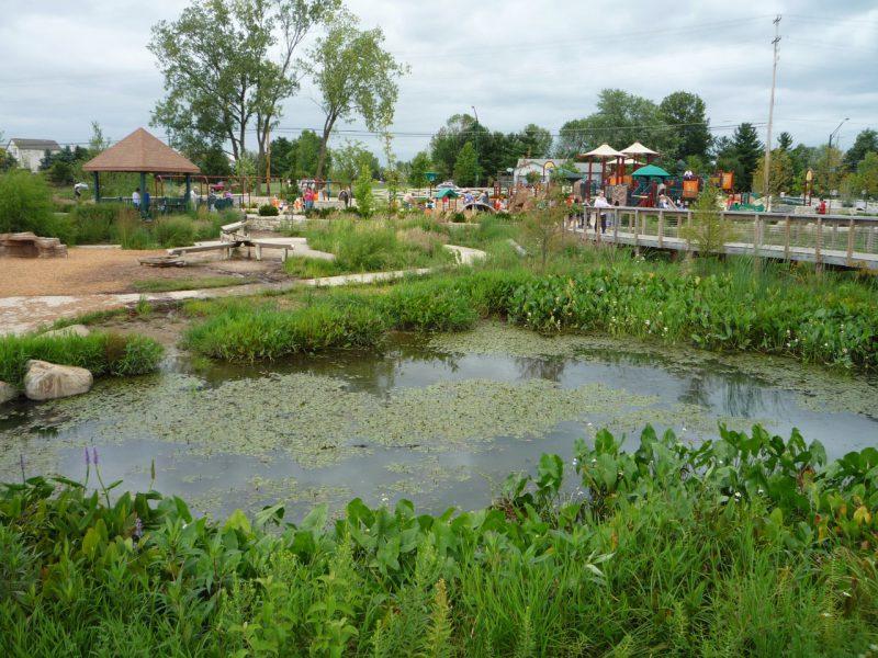 写真:池の対岸から臨む遊び場