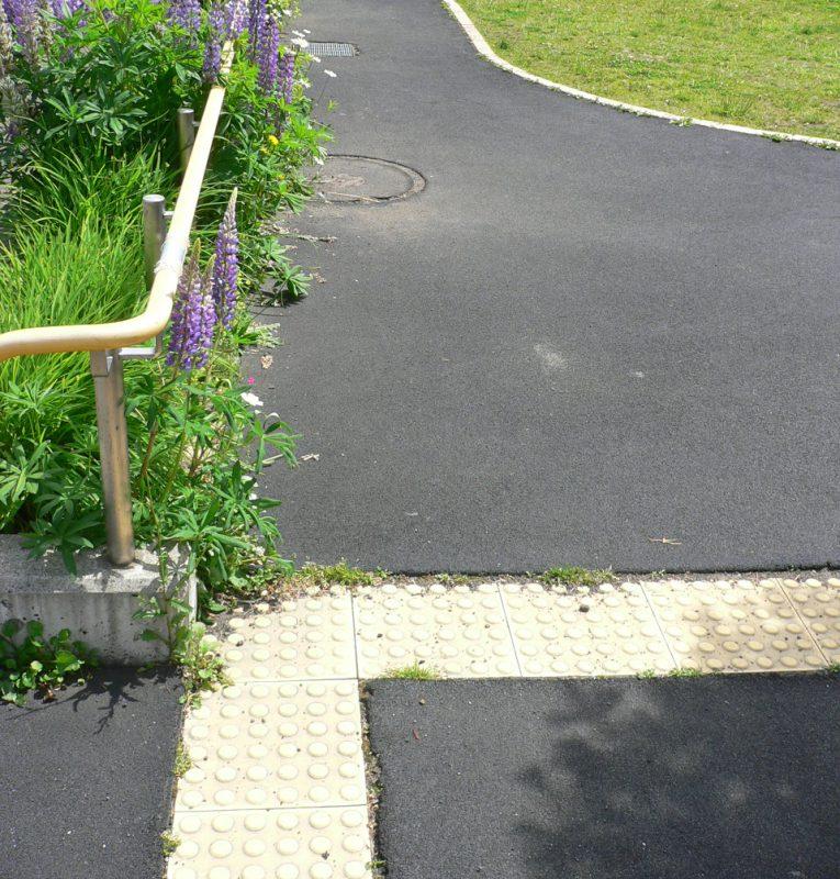 写真:芝生広場周囲の園路。一見アスファルトに見えるが薄いゴムチップ舗装