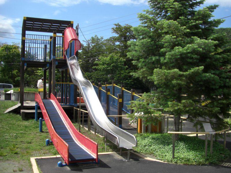 写真:2本の滑り台がある複合遊具。手前に大きなモミの木