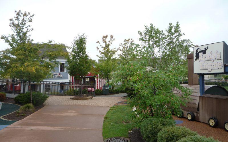 写真:園路の両側に街路樹。正面にはいくつかの家