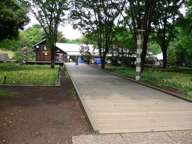 写真:緑の木立の中に延びる幅2メートル以上の緩やかな木製スロープ。両端には立ち上がり部があり、歩行者の踏み外しやベビーカー・車いすの脱輪を防ぐ