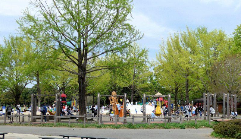 写真:リニューアルされた遊び場の遠景