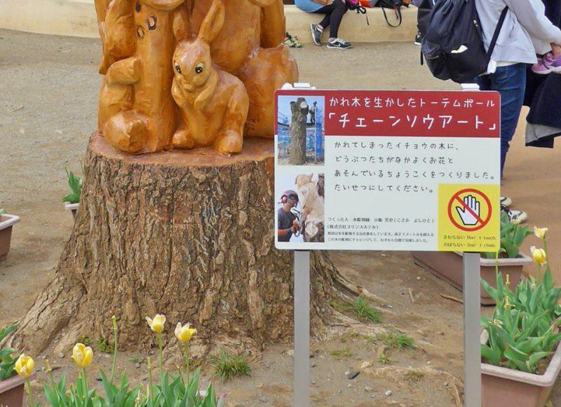 写真:木の回を囲むチューリップのプランター。2ヵ所に注意書きと制作の経緯を伝える看板
