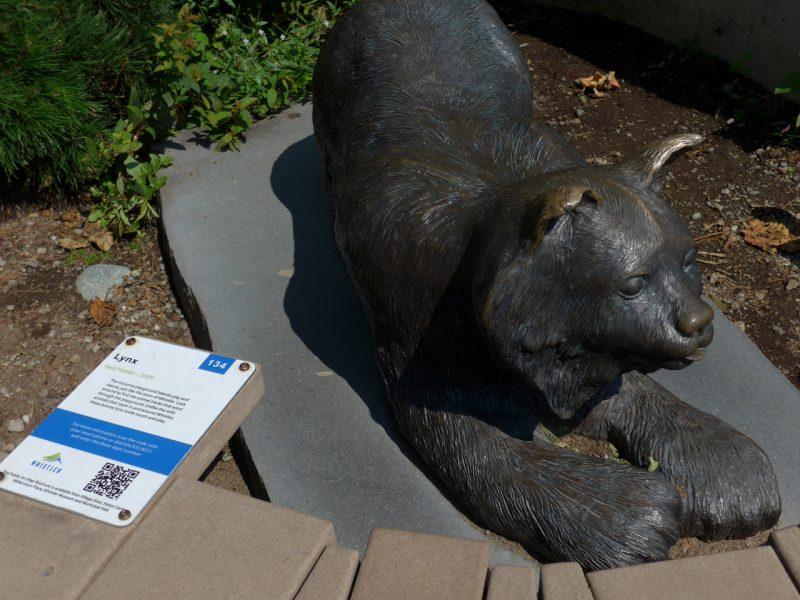 写真:大型で毛足の長いネコ科動物のリアルな像と解説パネル