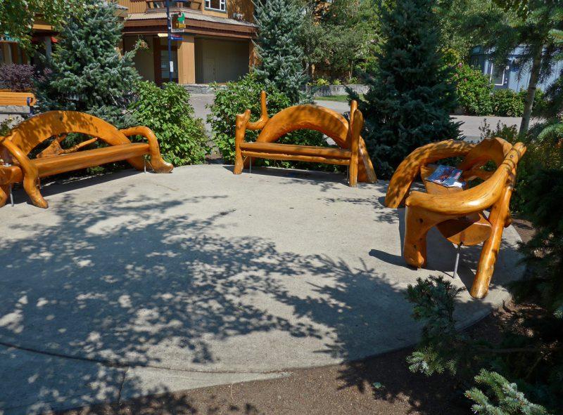 写真:観光客も利用しやすい休憩スペース。木のうねりを活かした特徴的なベンチが程よく間隔を空けて並べられており、周囲の植栽が木陰をもたらす