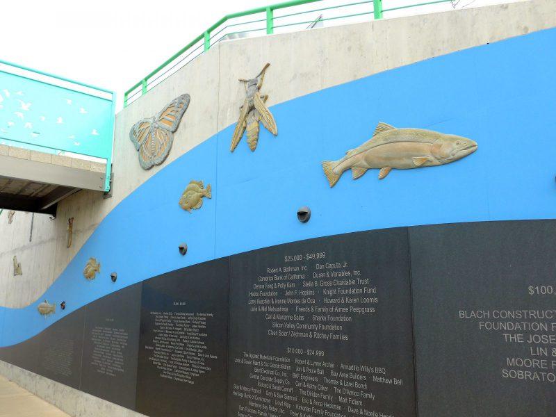 写真:コンクリートの壁に刻まれた団体や個人の名前。上には魚や虫のレリーフが並ぶ