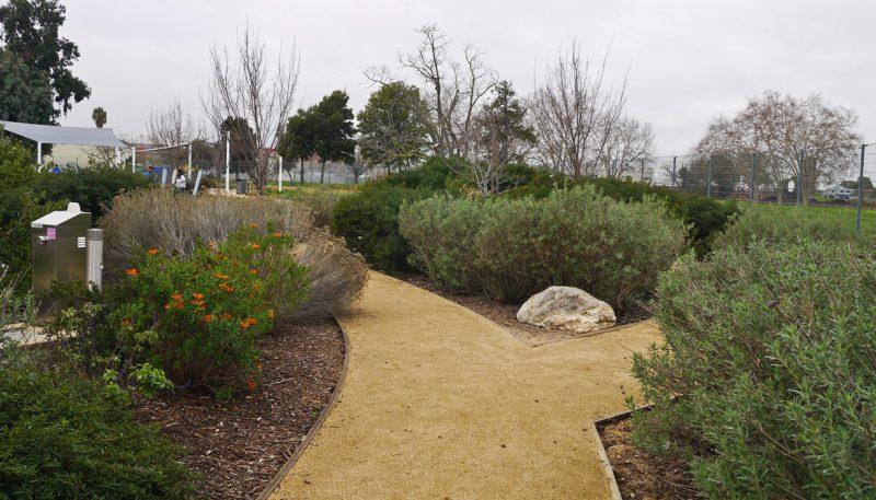 写真:ガーデンエリア。さまざまな低木と共にローズマリーやセージ、ミントなど花や香りを楽しめる植物も