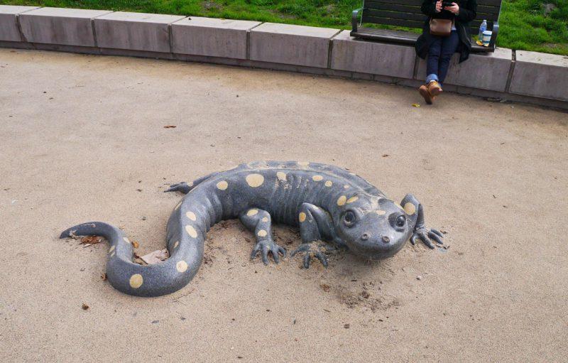 写真:地面に設置された体長1メートルほどのイモリのオブジェ。リアルながら愛嬌のある表情でこちらを見上げている